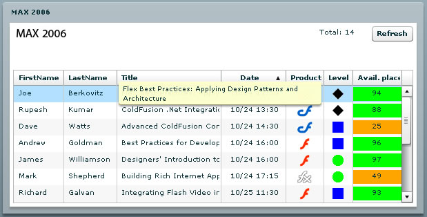 datagrid flash: